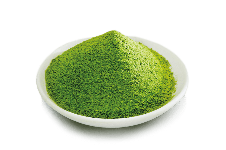Seicha Matcha Tee pulver - fein gemahlen und Bio